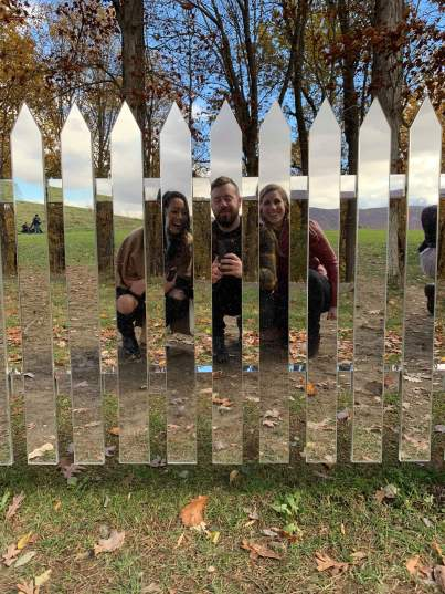 Mirror Fence (3)